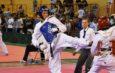 Kętrzyn gospodarzem XXXV Mistrzostw Polski Seniorów w Taekwondo Olimpijskim